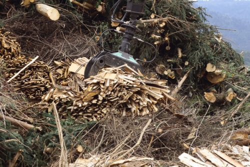 Suministro astillas de madera para calderas de biomasa