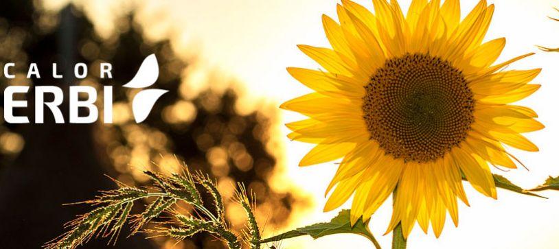 Calor Erbi y la energía solar