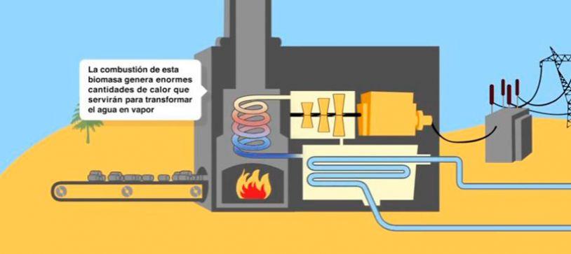 ¿Qué es una central de biomasa?