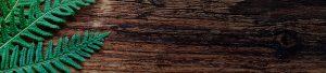 Suministro astillas y pellets biomasa
