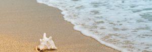 Mantener los océanos libres de plásticos