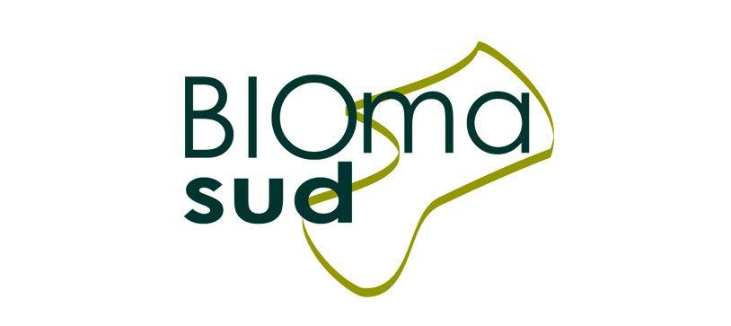 Qué es Biomasud