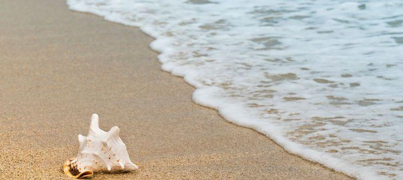 Plásticos y océanos
