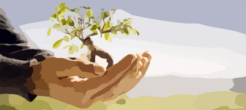 Organismos sobre el Medio Ambiente