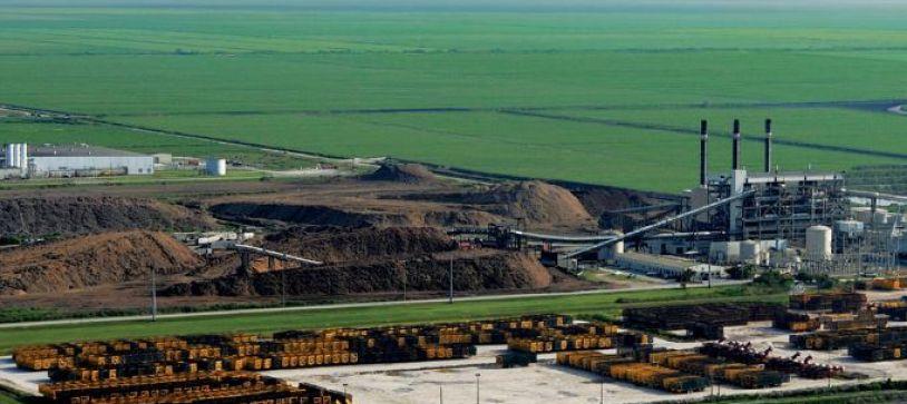 Conoce las 10 mayores plantas de biomasa del mundo